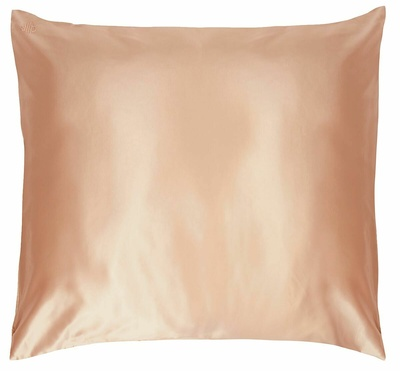 Slip Pure Silk Pillowcase Euro
