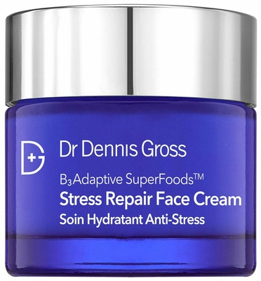 Dr Dennis Gross B³Adaptive SuperFoods™ Stress Repair Face Cream